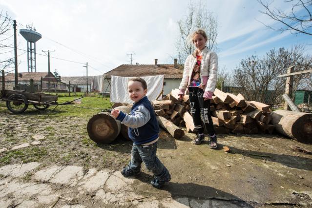 Edit testvérének gyerekei az ajándékba kapott fával